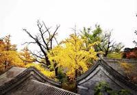 北京周邊最美的9條徒步穿越路線,走過的不只來時的路
