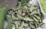 秋天的農村大集上賣的這幾種稀罕物,你都吃過嗎?