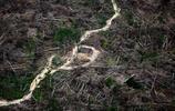 """鏡頭下:地球之肺亞馬遜雨林現狀,從天堂變""""地獄"""""""