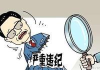 遼寧營口市人大常委會原副主任高作平涉嫌嚴重違紀接受組織審查