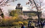 老照片:建國後遼寧鞍山的城市記憶,送給鞍山人民