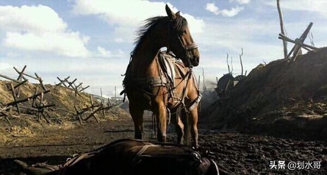 步兵真的擋不住騎兵衝鋒嗎?侯景帶著800騎兵說是,陳霸先卻不服