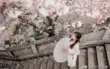 今年的櫻花就要開了,有沒有準備好拍一場美美的櫻花人像大片