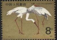 郵票珍藏 白鶴