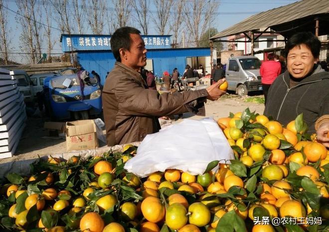 農村大集上很不起眼的小生意,雖然很辛苦,但是一天卻能賺幾千塊