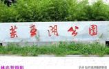 陝西銅川:大美耀州、藥王湖公園夏色美景如畫 姚忠智 攝影