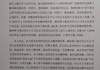 《最強大腦》選手發道歉聲明 承認捏造魏坤琳桑潔虛假關係