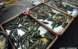 週末探訪青島海鮮早市 北方梭子蟹批量上岸30元一斤 市民扎堆嚐鮮