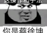 劍三楊林登錄星飯糰,蔡徐坤遇最大危機,GWW果然天選之人?