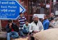 實拍印度首都世界上最大的香料市場:繁忙熱鬧,人們用頭搬運貨物