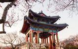 中國建築元素,這才是中式建築