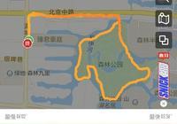 五公里跑進多少時間內就能在國際性質的馬拉松賽事上拿獎?