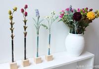 愛插花卻不懂插花的福利篇:精美的家庭插花所需工具及用途
