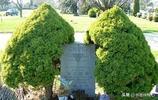 張國燾墓,位於加拿大多倫多松山公墓,墓碑朝向東南,葬於小路旁