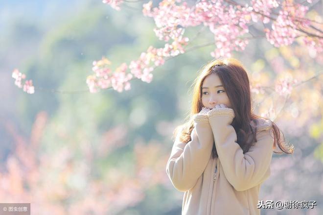 國內賞櫻花不僅有武漢大學,這四個櫻花大學你該知道,不辜負春天