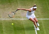 溫網半決賽前瞻:哈勒普VS斯維託麗娜