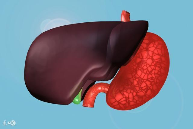 醫生:肝出問題了會影響到夜晚的睡眠,記住一種草可養肝,助睡眠