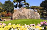 【美圖】是誰打翻了上帝的調色盤——武漢王家墩公園超美圖集