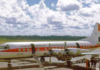 唯一倖存者:17歲少女從三千米高空墜落,徒步10天走出亞馬遜雨林