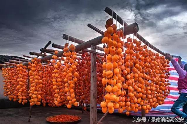 """婺源喜迎國慶:大紅燈籠高高掛,開啟""""柿""""覺盛宴……"""