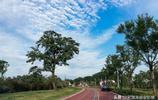 陝西渭南:南塬綠道自行車運動公園圖紀 宋渭濤 攝影