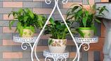 還傻傻的把家裡的花盆擺窗臺上?這幾款花架讓你的花擺出藝術感