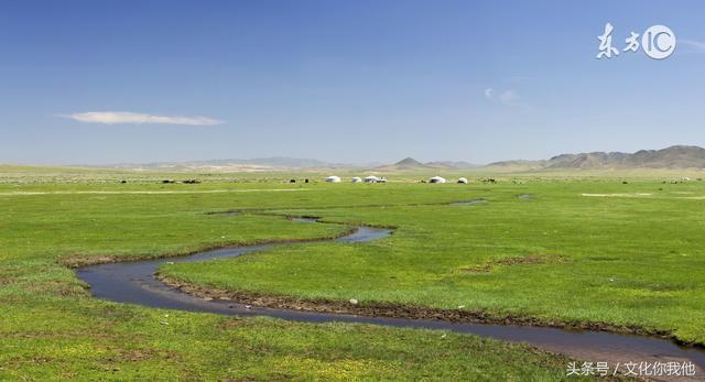 草原既是牧人的天堂,也是鳥兒的天堂