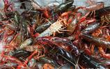 農婦賣蝦 小龍蝦15元一斤 草蝦30元一斤 你喜歡吃哪種?