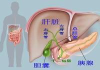 身體6個地方能看到肝臟是否健康,肝臟最怕你做8件事!