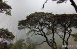 香格里拉。普達措國家森林公園