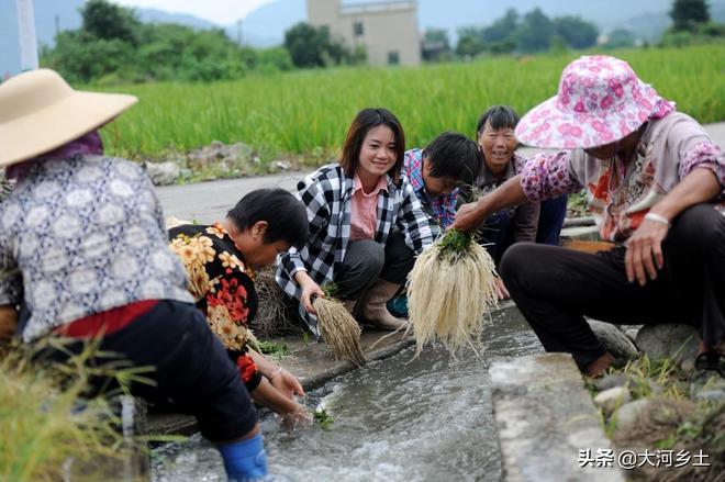 80後農姐年扛百噸化肥,掙百萬後回鄉種絲線根:想帶鄉親一起致富