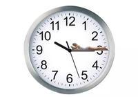 睡眠不好?和生物鐘息息相關!生物鐘是什麼?