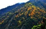 旅行攝影:路過阿壩理縣,被這風景迷住了