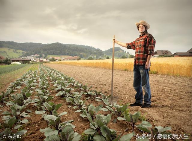 農民難,農民難