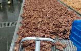 滑縣這家燒雞老店,每天出廠燒雞一萬多隻,每年的固定利潤上千萬