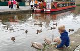 英國5歲男孩沒去過一天學校,知識儲備量遠超大學生