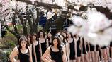 實拍:韓國女大學生櫻樹下走秀,長腿搶鏡,氣場不輸超模