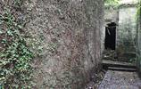 東莞:探訪一條古巷,大樹覆蓋,古屋林立,你怕嗎?