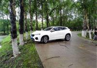 長城WEY VV7撞樹事故,這輛代表國產車安全高度的SUV,讓人沉思