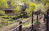 秦嶺寧陝千柏樹溝|半山腰上藏著一棟老房子,主人非常有生活情趣