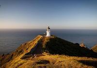 新西蘭商業移民方式|新西蘭移民包成功