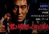 有哪些在日本上映的中國電影?