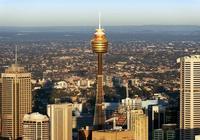 悉尼塔上看悉尼,悉尼塔的正確打開方式