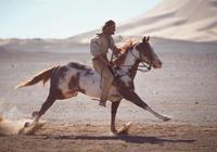 馬為何從多趾變為一趾?跑得快不如跑得好,放慢速度才能活得更久