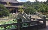 獨自旅遊 杭州慧因高麗寺旅行遊記 宗教文化為基調的特色旅遊景點