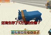 迷你世界:被玩家遺忘了5萬天的寵物,再次尋找寵物時卻被嚇到