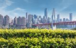 國內最有良心的城市,消費很低還不宰客,連輕軌都成為了景點