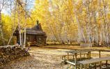 我的旅行日記 遊秋天的呼倫貝爾 像走進了一場秋天的童話世界