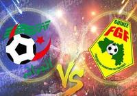 非洲杯預測:阿爾及利亞vs幾內亞 幾內亞大將缺陣難高估