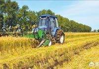 有人說2018年的水稻難賣掉,為什麼?